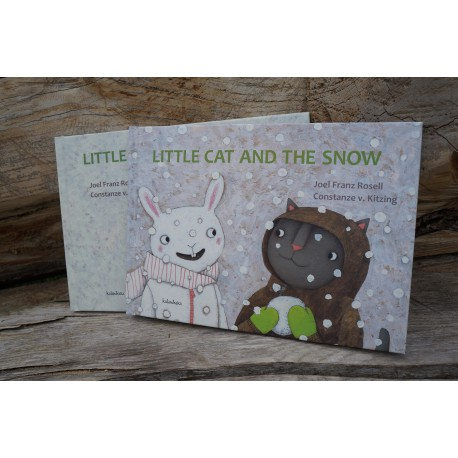 Little cat and the snow